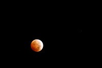 2nd Blood Moon 2014-7